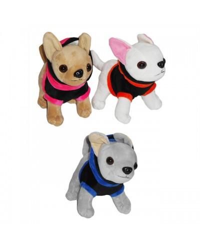 Мягкая игрушка SF265362 собачки, 3 вида, в пакете 15*16см