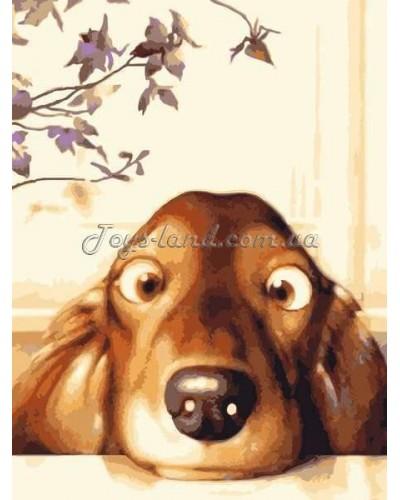 """Картина по номерам Животные """"Забавный щенок"""" 30х40 см (без коробки), арт. 2443/1, Идейка"""