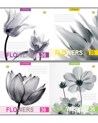 Зошит, 48 аркушів, клітинка, Тетрада (Білі квіти (81575))