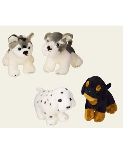 Мягкая игрушка CLR111 собачки, 4 вида, в пакете 20 см