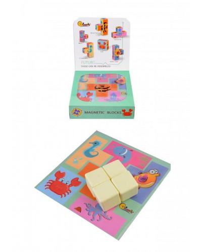 Кубики магнитные 704-1/2/3/4  4 вида, в коробке 16,5*16,5см