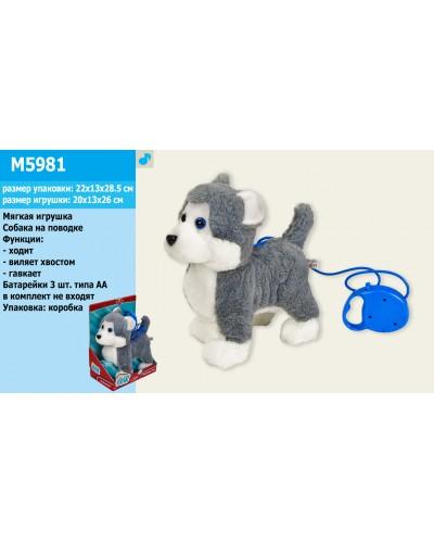 Мягкая игрушка M5981 Хаски на поводке, лает, ходит, виляет хвостом, в коробке 22*28,5 см