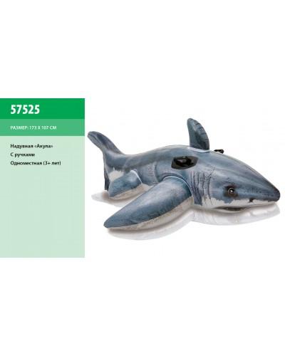 """Надувн. """"Акула"""" 57525 винил, 1-о местн. (3+ лет) ручками, рем.комплект, в кор. 154*104см"""
